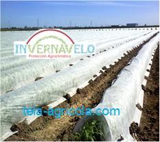 El uso de la esta tela hará que sus cultivos sean de la mejor calidad en el mercado.